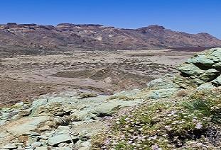 greenstone belt