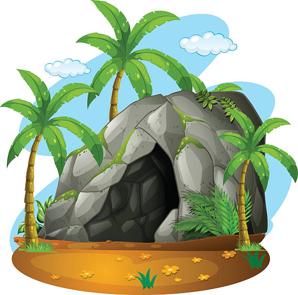 Nature scene cave coconut trees